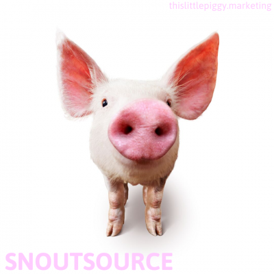 Snoutsource your Marketing