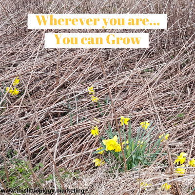 Wherever you are, you can grow, and we can help you
